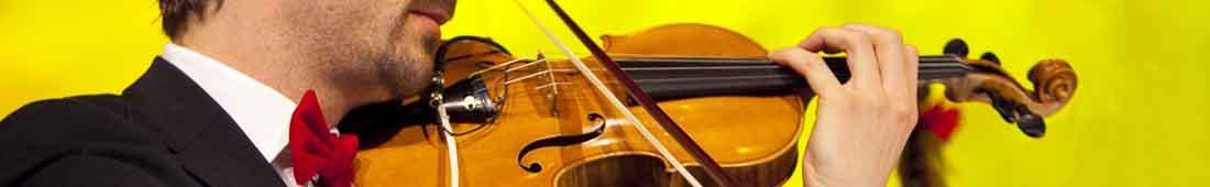 Geigenhaende3